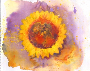 sunflower April 2015
