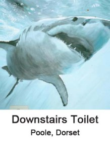downstairs toilet thumbnail