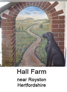 hall farm thumbnail