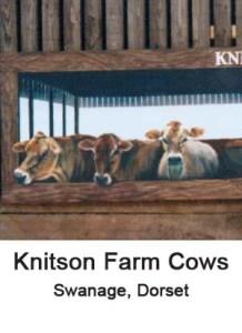 knitson cows