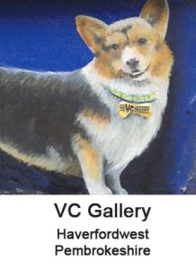 VC Gallery