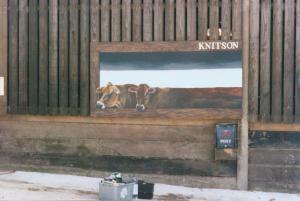 knitson cows3