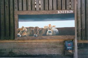 knitson cows4