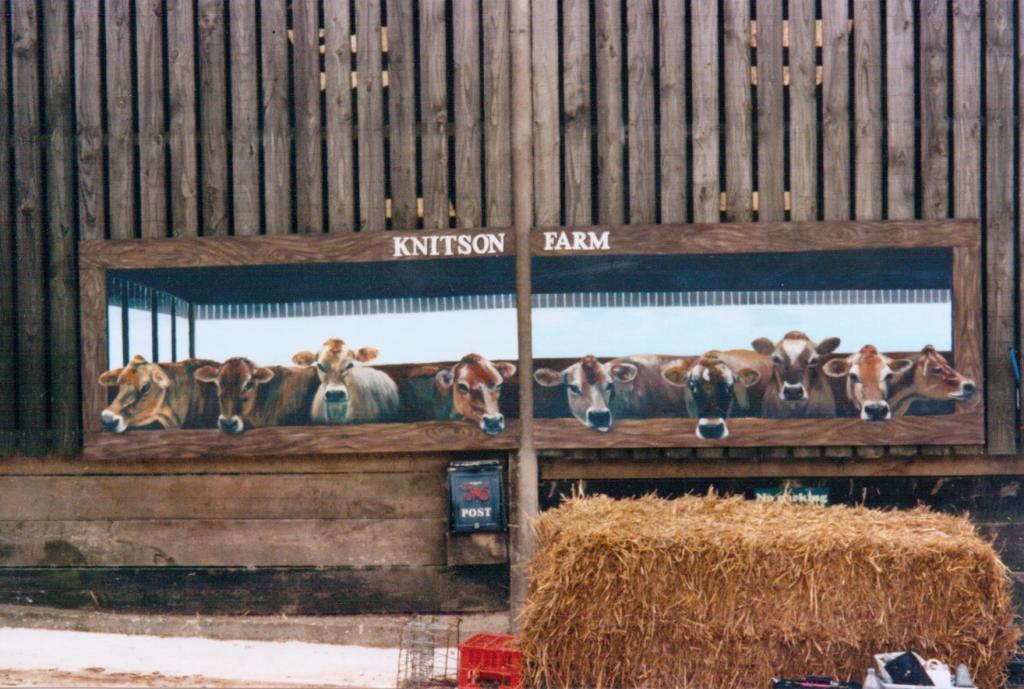 knitson cows7