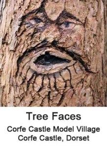 corfe trees