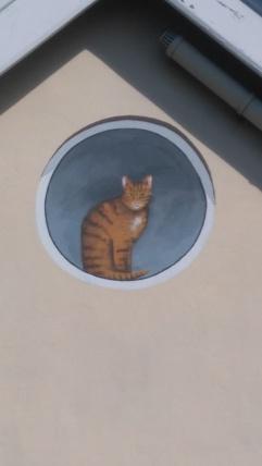 cat repaint_2017