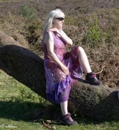 lilac & burlesque rose 4
