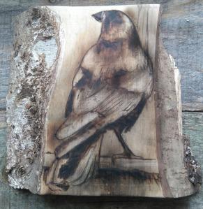 crow pyrography