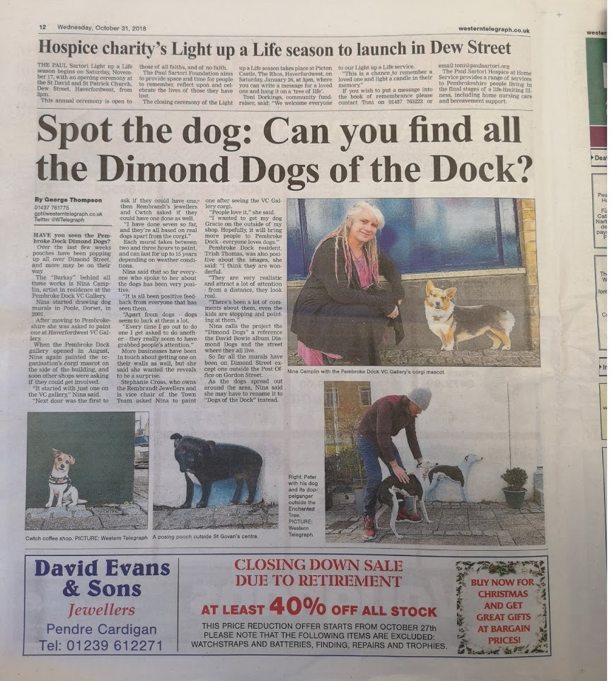 western telegraph article about nina camplin and  dimond dogs